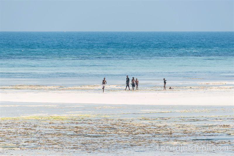 imagenes y sensaciones de Kenia y Tanzania playas de Zanzíbar