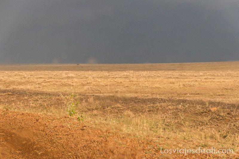 dos días en masai mara tormenta