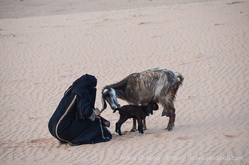 vida en desierto de wadi rum