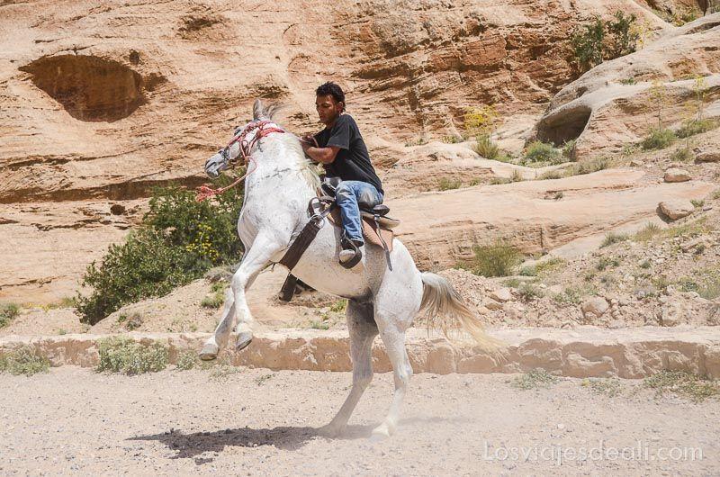 Petra caballo