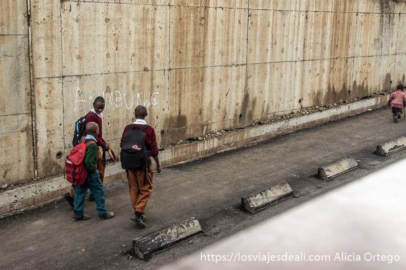 emociones que experimentas cuando viajas tanzania
