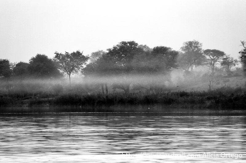 niebla en río okavango