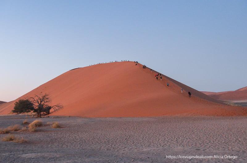 duna 45 en el desierto de Namibia