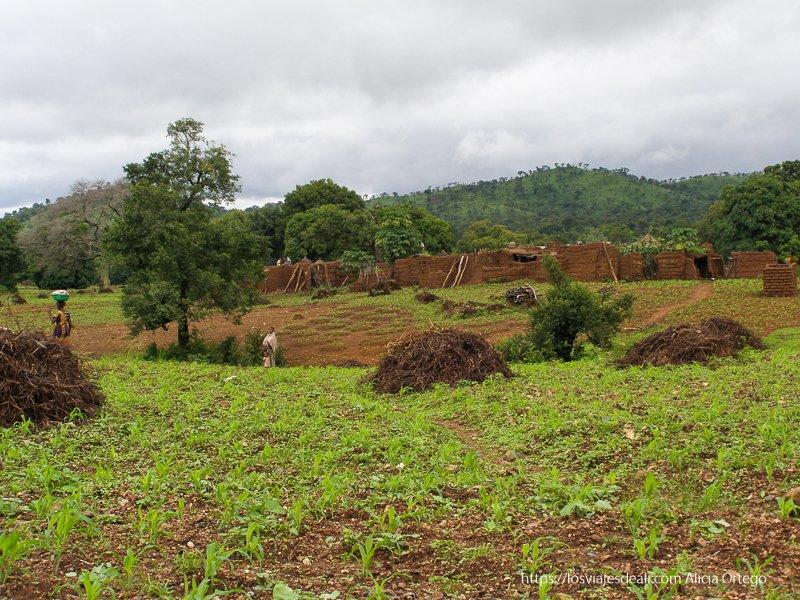 paisaje verde del pueblo de Sansana en Burkina