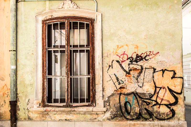 grafittis junto a una vieja ventana en brasov