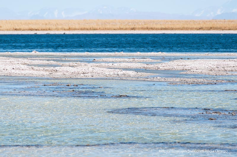 laguna céjar con distintas tonalidades de azul Organizar tu viaje a Chile