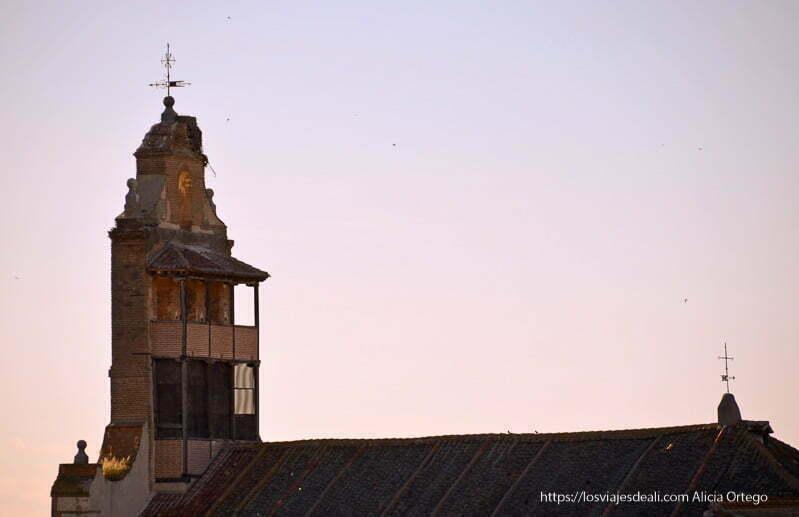 campanario y parte del tejado de Etreros con golondrinas alrededor en el atardecer