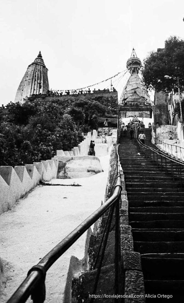 escaleras hacia templo budista en katmandu nepal