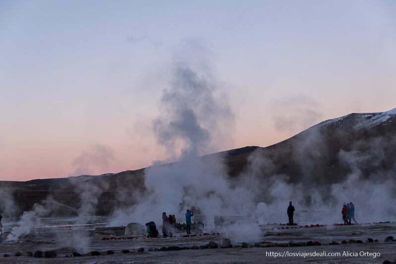 fumarolas de geyseres el tatio con luz rosada de amanecer viajar al desierto de atacama