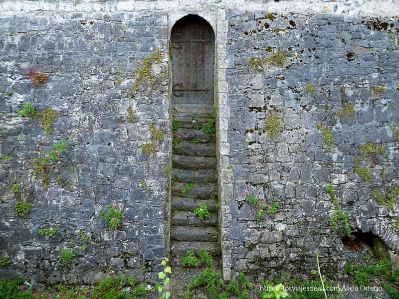 escaleras con puerta en el muro del castillo kilkenny
