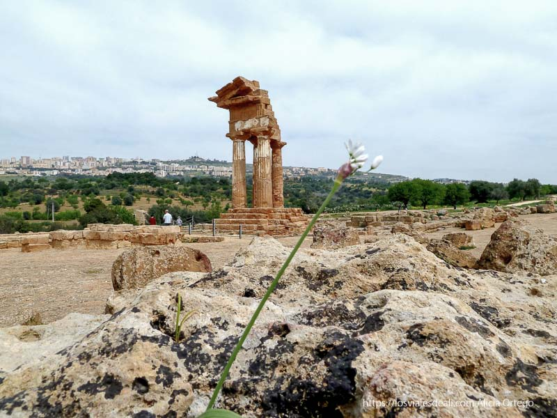 esquina de templo en agrigento con 4 columnas