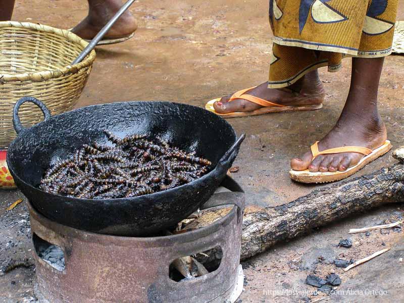 orugas fritas en la sartén en bobo dioulasso