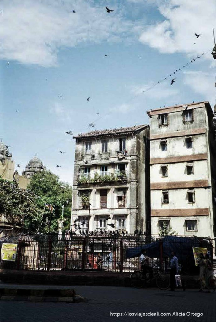casas viejas con palomas en el cielo bombay