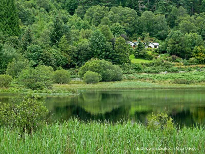 paisaje verde con casitas al fondo reflejándose en lago glendalough