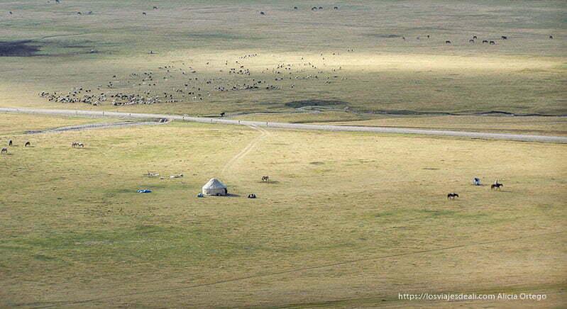 una yurta en medio de prados y un rebaño de ovejas al lado en el lago song kol
