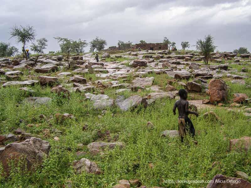 paisaje rocos salpicado de hierba y niños corriendo pais dogon