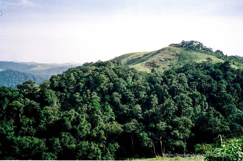 paisaje de montes y bosque verde en periyar en el sur de India