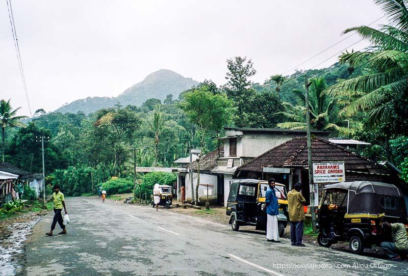 carretera de periyar con vegetación frondosa a los lados  en el sur de India