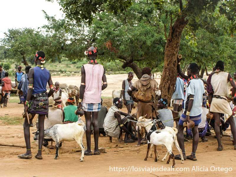 zona de venta de cabras bajo un gran árbol mercados del sur etíope