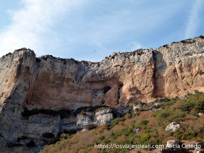 paredes de roca en foz de lumbier y un buitre volando encima navarra