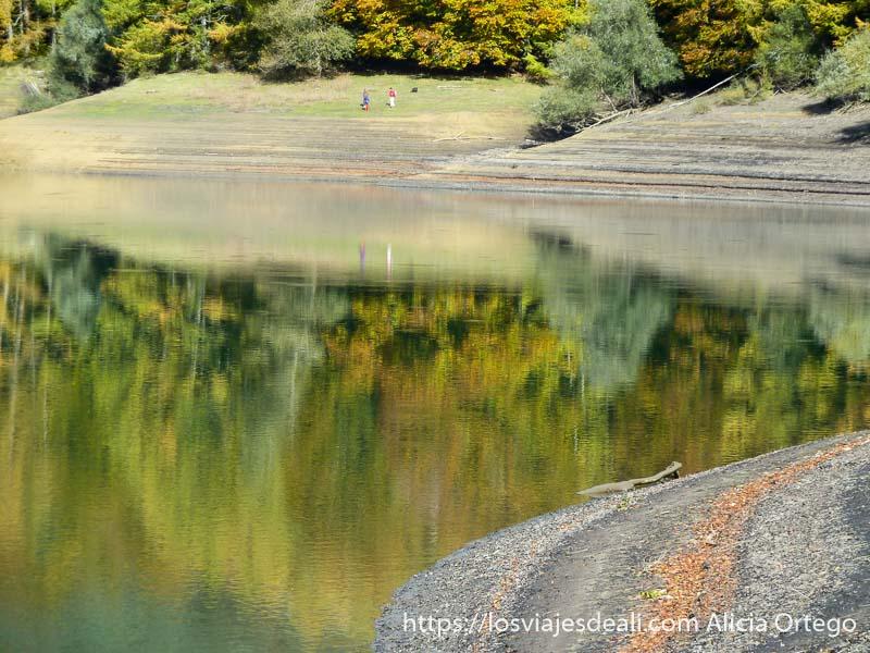 colores del otoño en el reflejo del agua en selva de irati
