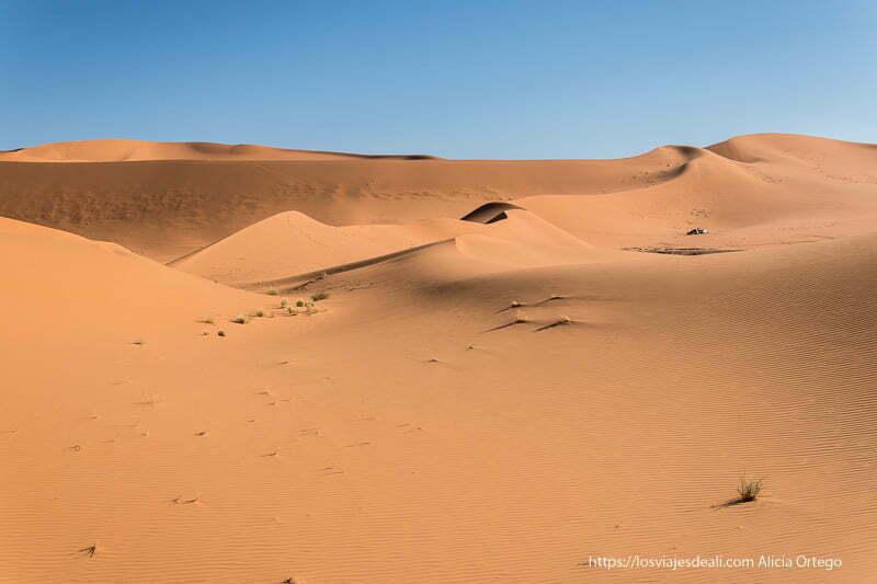 dunas recortándose en el cielo azul