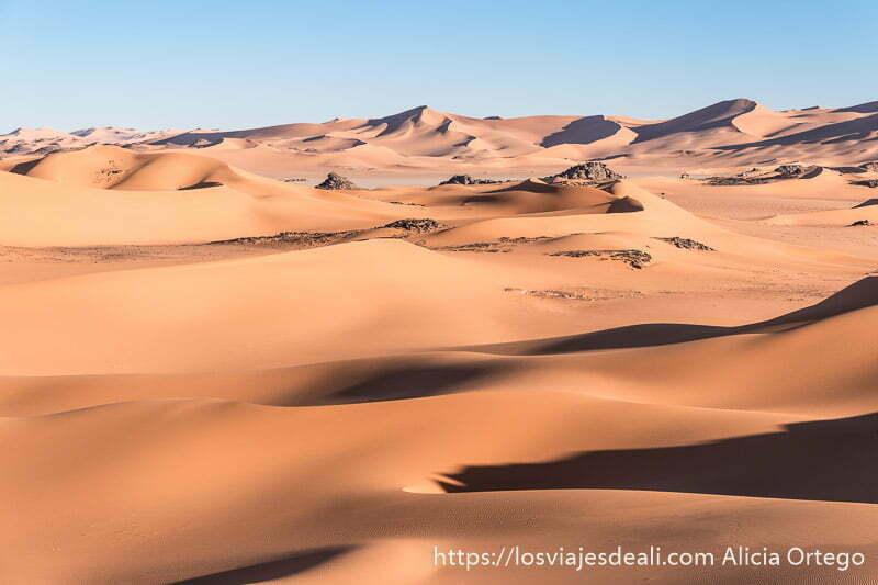 extensión de dunas al atardecer paisajes del sahara