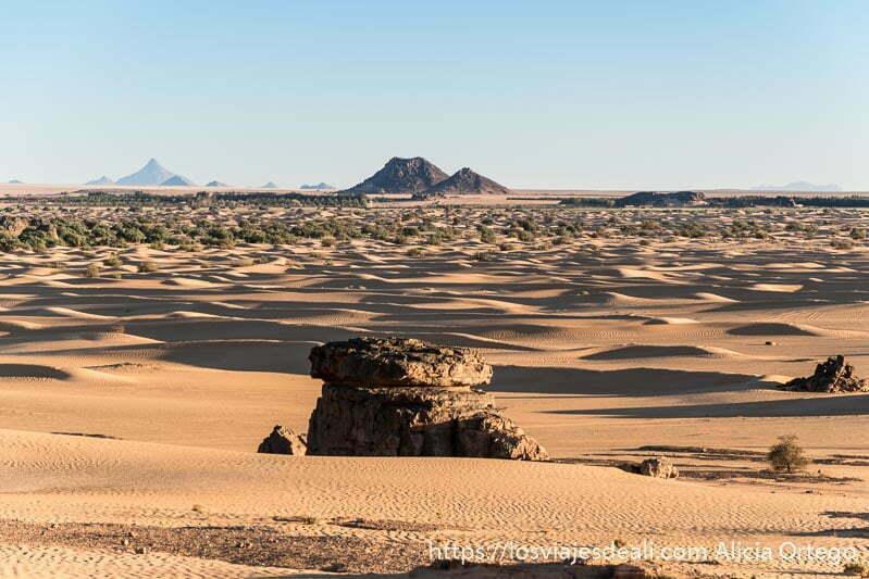 extensión de dunas con monte tiska al fondo paisajes del sahara