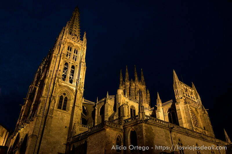 catedral de burgos en la noche fin de semana cidiano