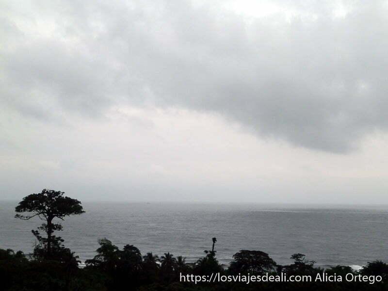 panorama del mar con vegetación selvática en la orilla limbe