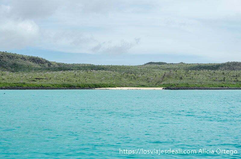 isla santa fe llena de vegetación verde con pequeña playa de arena blanca y mar color verde turquesa