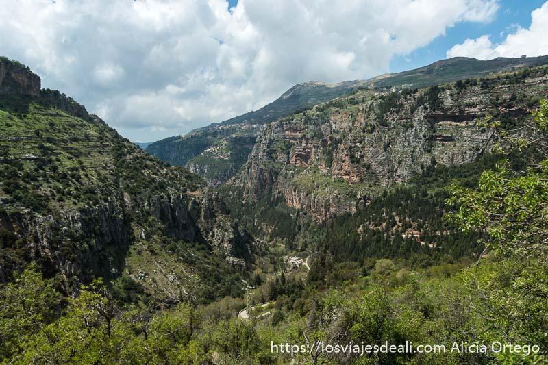valle profundo muy verde de las montañas de Líbano