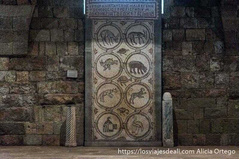 mosaico con 8 círculos cada uno con un animal diferente: flamenco, ciervo, jabalí, conejo, etc. en beiteddine excursión a los alrededores de beirut