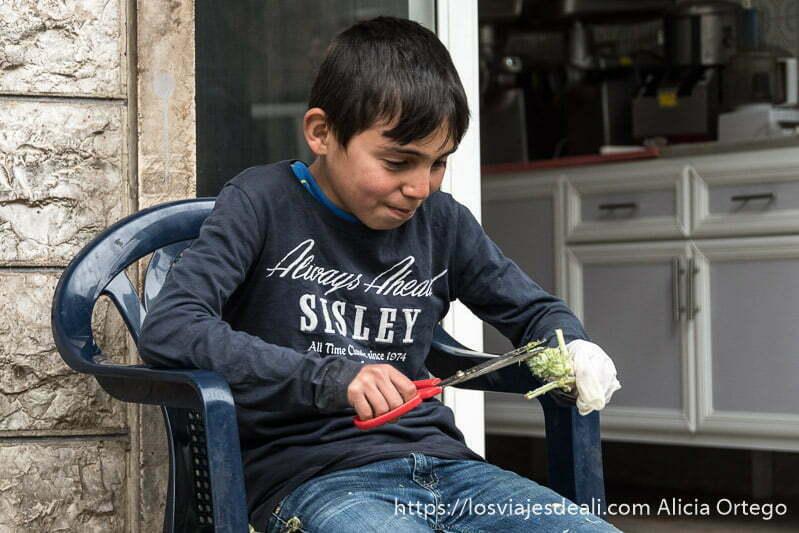 niño pelando una verdura con grandes tijeras sentado en una silla en deir el qamar