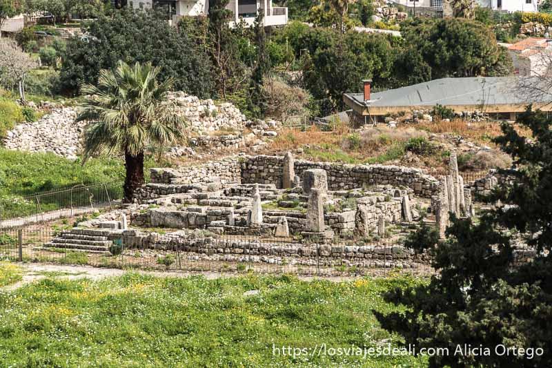 templo de los obeliscos con una palmera al lado visto desde lejos en la ciudad antigua de byblos