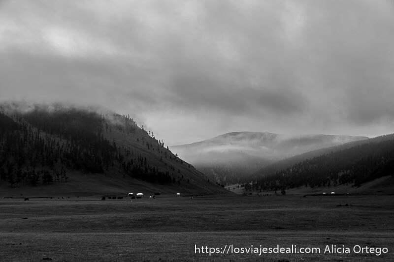 paisaje en blanco y negro de montañas con bosques y nieblas en el valle de orkhon