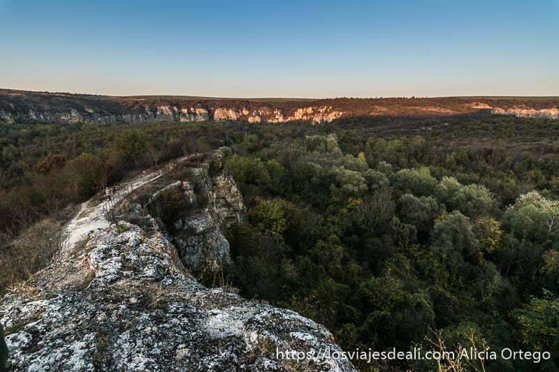 plataforma de roca adentrándose en el bosque donde las copas de los árboles quedan a su altura y al fondo paredes del cañón de ivanovo