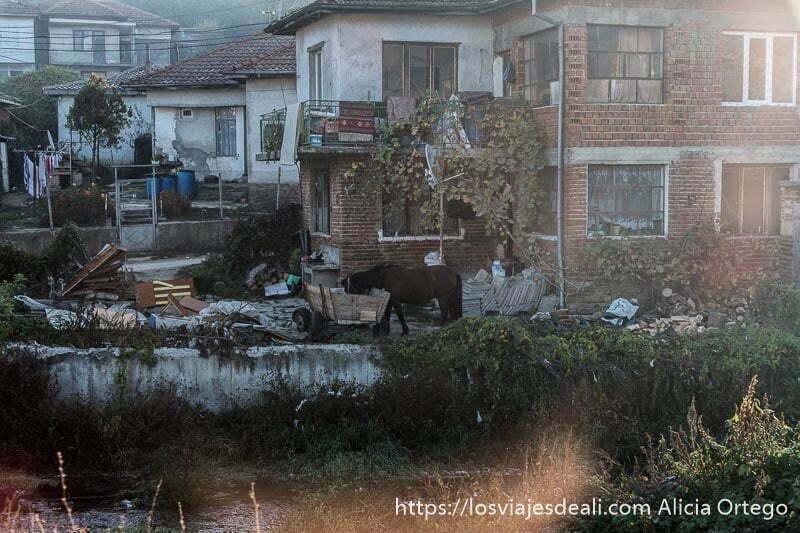 casas de ladrillo junto a un basurero y un caballo comiendo paja en un barrio de gitanos de bulgaria en la ruta a Ruse