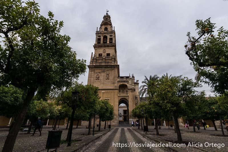 torre campanario de la mezquita vista desde el patio con naranjos visitar córdoba