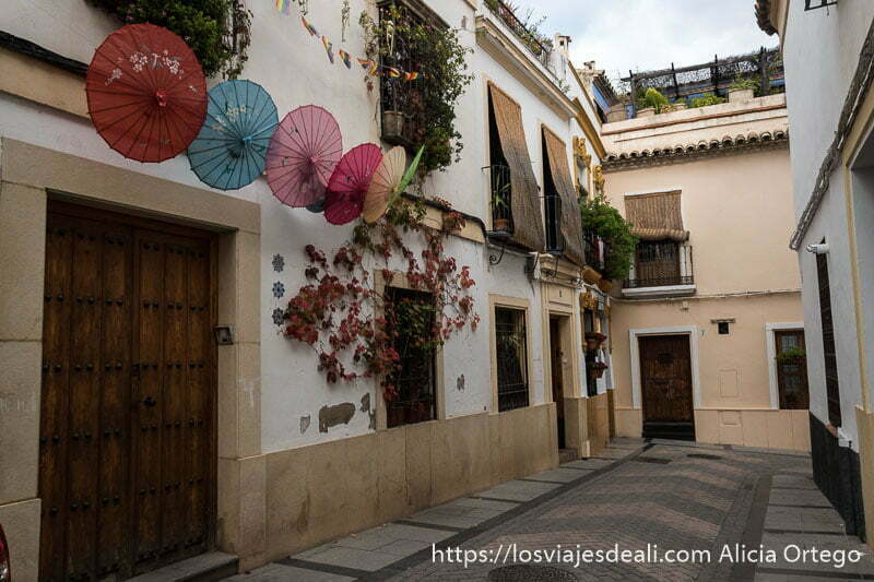 calle típica de córdoba con balcones con persianas de fibra vegetal y macetas