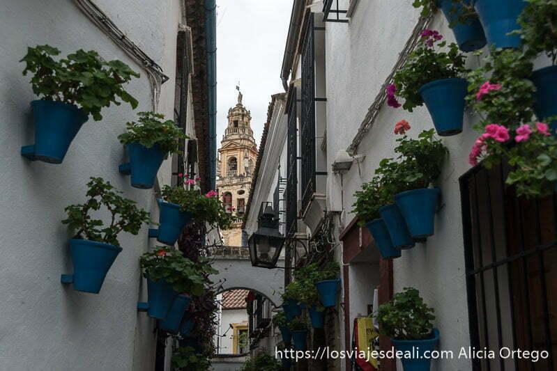 calleja de las flores con la torre de la catedral en el centro
