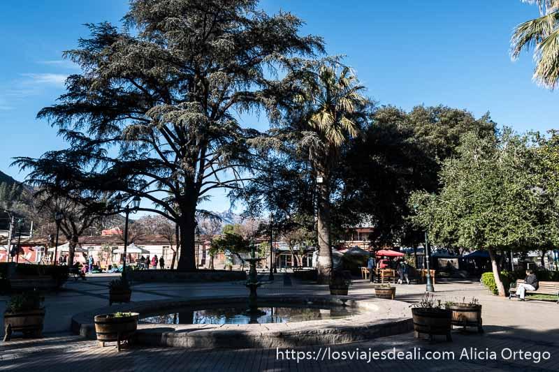 plaza de santiago del maipo con gran árbol y palmera y una fuente redonda de piedra en el centro en un día soleado