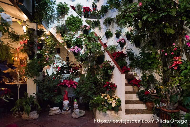 escalera llena de macetas con flores de pascua roja sy otras flores rosas y debajo de la escalera el pozo y unos gnomos