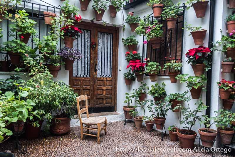 rincón de uno de los patios de córdoba con silla de paja pequeña y muchas macetas