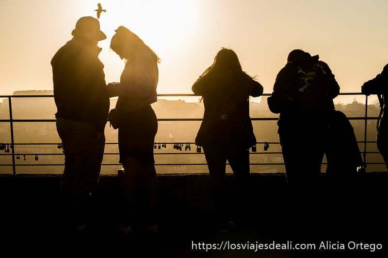 gente apoyada en una barandilla a contraluz y una gaviota pasando por encima de sus cabeza con cielo naranja