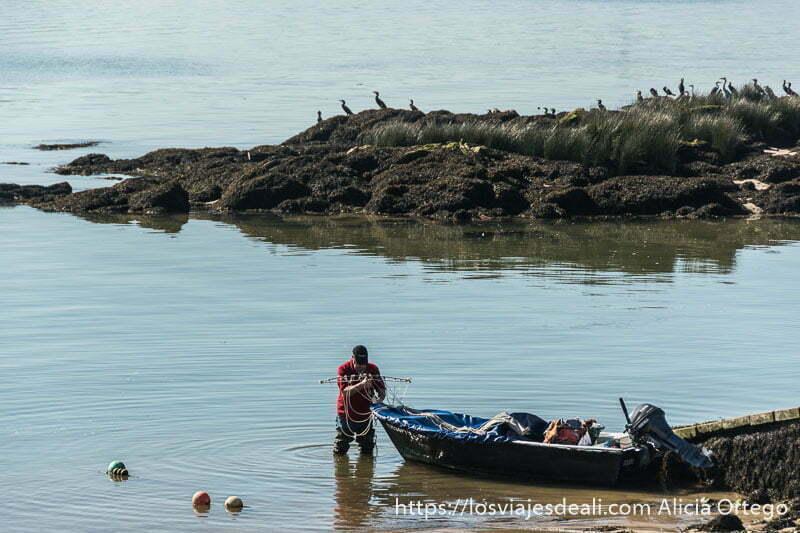 pescador recogiendo sus redes y detrás rocas con cormoranes en lo alto