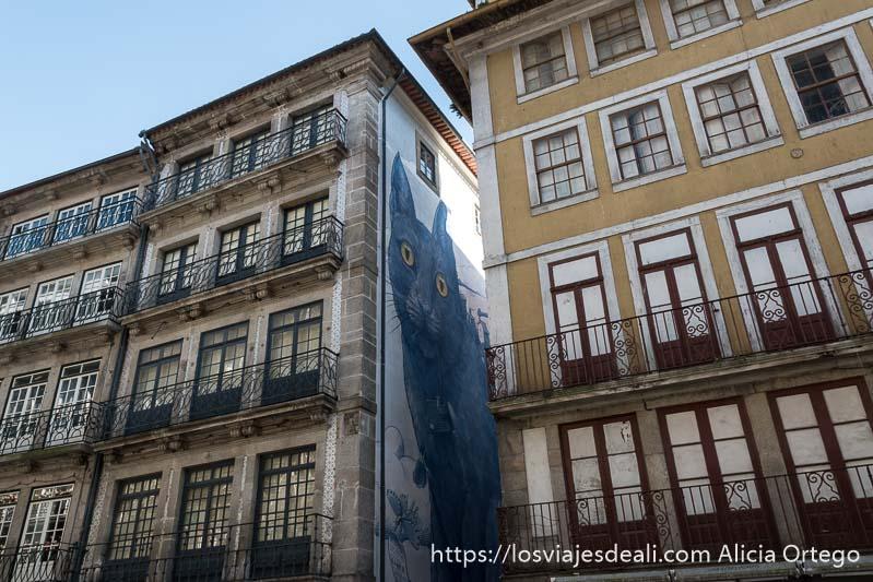 dibujo de un gran gato azul en la fachada de un callejón estrecho que desemboca en la rua de las flores