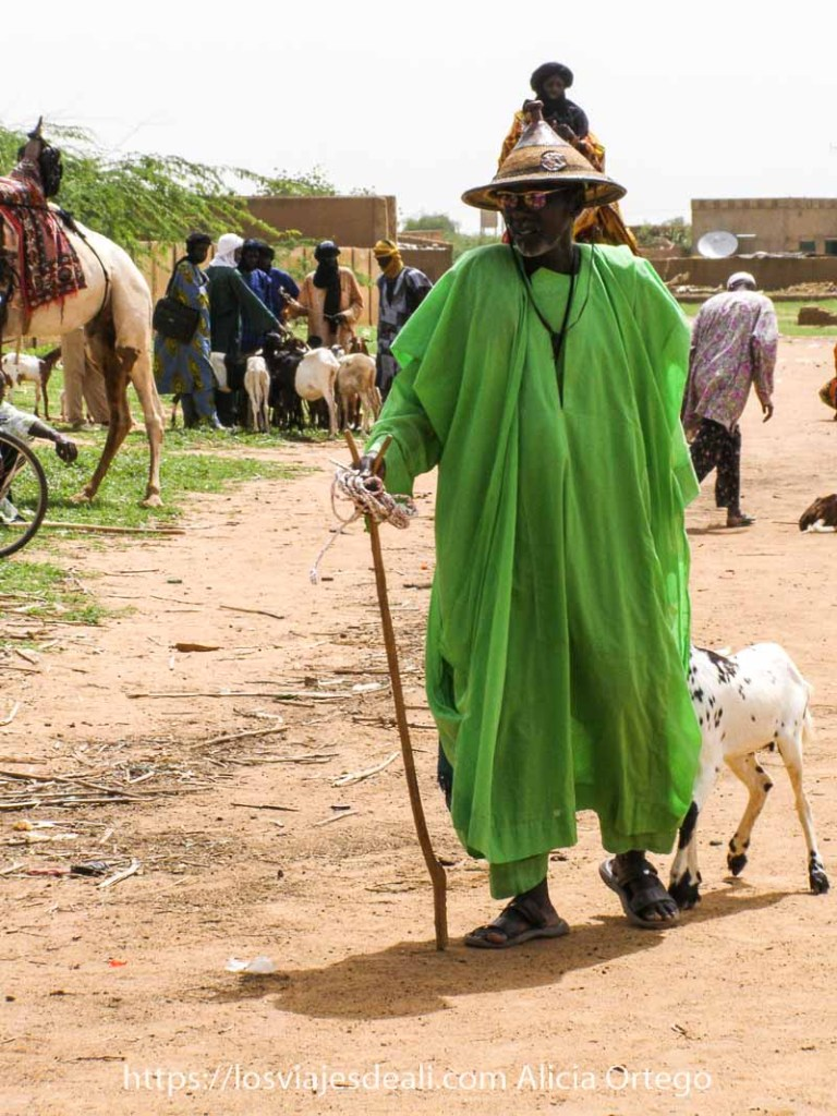 hombre peul con traje de color verde pistacho, gorro cónico y gafas de sol de espejo tirando de una cabra en el mercado africano de gorom gorom