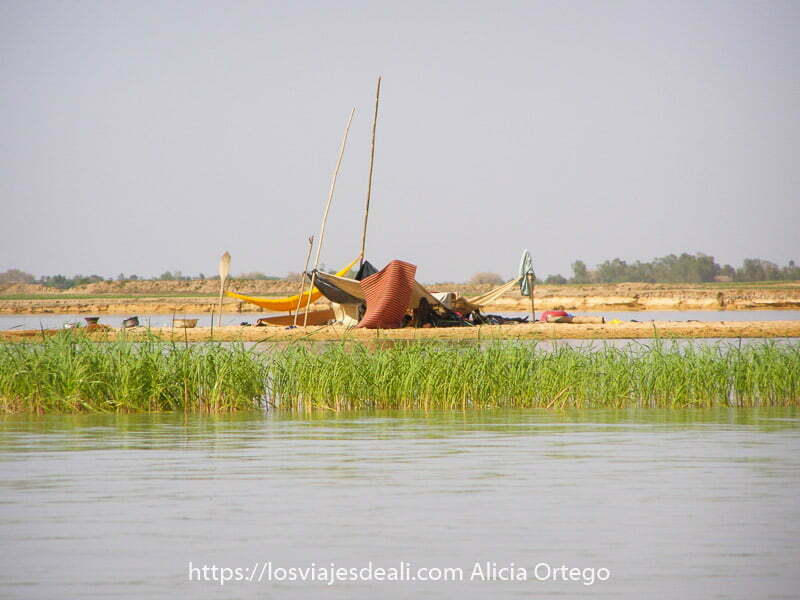 tienda de nómadas hecha con telas extendidas entre palos en un islote del río níger con plantas acuáticas delante