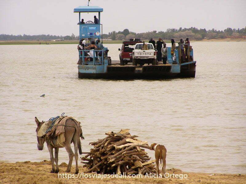Fotos de Mali: ferry de Tombuctú cargado con un par de coches y algunos tuareg en medio del río Níger y en primer plano un montón de madera, un perro y un burrito